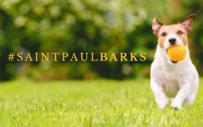 #SaintPaulBARKS Photo Contest
