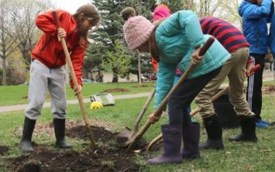 Plant a Tree May 22